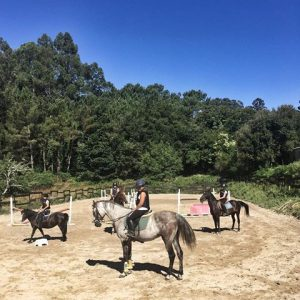 3 Prm Excursión Centro Ecuestre As Leiras @ Bergondo | Galicia | España